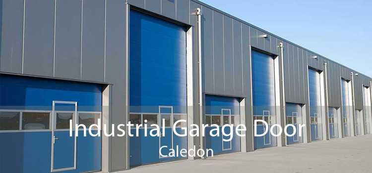 Industrial Garage Door Caledon